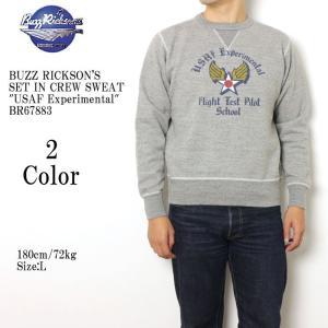 BUZZ RICKSON'S(バズリクソンズ) セットイン クルースウェット