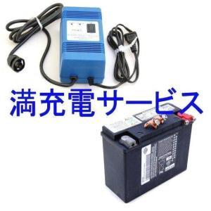 【即納】 1006-65948-00A ヒロチー商事 バッテリー満充電サービス HD店|hirochi2