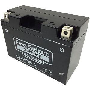【メーカー在庫あり】 PSB117 プロセレクト PROSELECT バイク用 バッテリー ジェルタイプ GL-PT9B-4 GT9B-4互換 (液入り充電済み) HD店|hirochi2