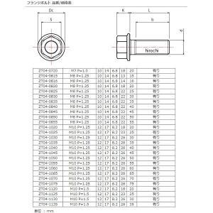 【メーカー在庫あり】 ZT04-0830 ジータ ZETA チタンフランジボルト 汎用 スタンダード M8 P1.25 30mm 1本入り JP店|hirochi|02