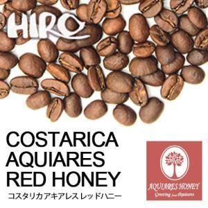 自家焙煎 コーヒー豆 マイクロロット コーヒー コスタリカ ハニープロセス アキアレス 農園 100g スペシャルティ コーヒー シングルオリジン hirocoffee-shop