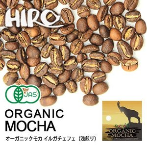 自家焙煎 コーヒー豆 オーガニック モカ イルガチェフェ スペシャルティ  シングルオリジン 100g|hirocoffee-shop
