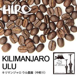 自家焙煎 コーヒー豆 キリマンジャロ スペシャルティ コーヒー マチャレ農園 タンザニア シングルオリジン 100g hirocoffee-shop