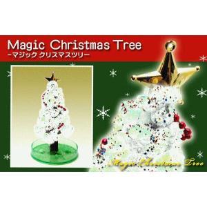OTOGINO◆マジッククリスマスツリーLサイズ ホワイト TR-1010◆育てるクリスマスツリー ._の商品画像|ナビ
