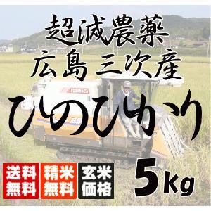 平成29年産 送料無料 広島三次産  超減農薬 ひのひかり 玄米 5kg 平成二十九年産|hiroshimatsuya