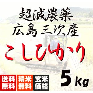 平成30年産 送料無料 広島三次産  超減農薬 こしひかり 玄米 5kg 平成三十年産|hiroshimatsuya