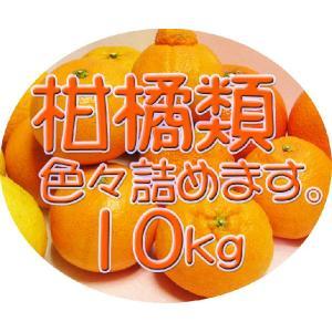 【完売しました。】広島瀬戸田産 旬の柑橘類を詰め合せてお届け致します 10kg入り 送料無料♪|hiroshimatsuya