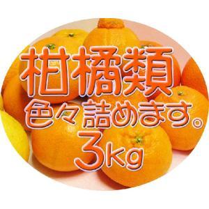 【完売しました。】広島瀬戸田産 旬の柑橘類を詰め合せてお届け致します 3kg入り 送料無料♪|hiroshimatsuya