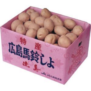 送料無料 安芸津のじゃがいも Lサイズ 10kg箱入り プレゼントにもどうぞ♪ ばれいしょ|hiroshimatsuya