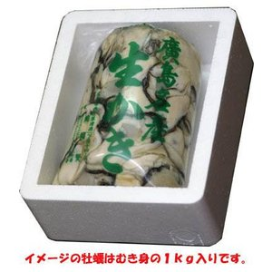 送料無料 広島生牡蠣 むき身1.5kg入り 直送 ギフト箱入|hiroshimatsuya