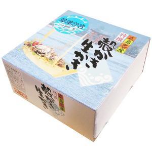 送料無料 広島 網登海産の生かき 殻付き 40個入り 産地直送|hiroshimatsuya