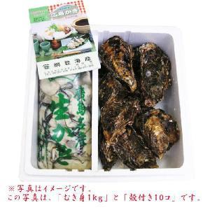 送料無料 網登海産さんの 広島生牡蠣むき身1kg と 殻付き牡蠣40コ のセット オイスターナイフ&手袋付き|hiroshimatsuya