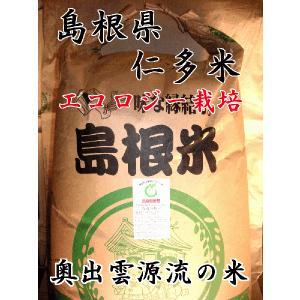 平成29年産 島根県 仁多産 減農薬 こしひかり 玄米 10kg(5kg×2) 28年度産|hiroshimatsuya