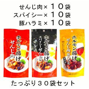 まとめ買い 広島名物 せんじ肉40g と スパイシーせんじ肉40g と せんじ肉豚ハラミ40g 10袋ずつ 計30袋セット|hiroshimatsuya