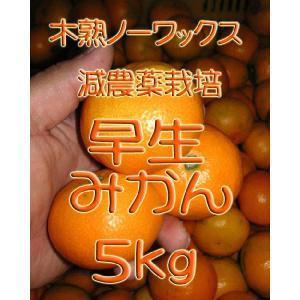 【制限中】瀬戸田産 早生(わせ)みかん 5kg箱詰♪ご家庭用|hiroshimatsuya