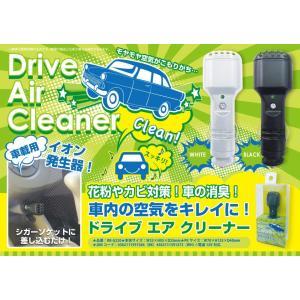 車用空気清浄機 イオン発生器 ゾックス(ZOX) ドライブエアクリーナー 黒 12V対応 RB-G220 送料無料
