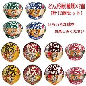 日清食品 どん兵衛 シリーズ 6種類×2個(12食) Bセット 送料無料|hiroshimaya-pachi