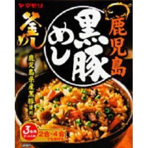 即食 時短食 レトルト 新着 ヤマモリ釜めしの素 特集 10種アソートセット 関東圏送料無料 本格風味をご家庭で|hiroshimaya-pachi|06