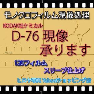 [ネットで注文][仕上げ1週間程度]  ブローニー120モノクロネガ現像を行います。 (KODAK ...