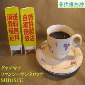 グアテマラファンシーサンタロッサSHB(S17)400g送料無料消費税込み hiruandoncoffee