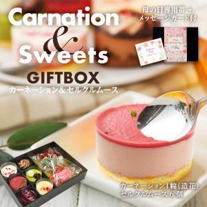 母の日 早割 カーネーション&スイーツギフトボックス 6種の ムースケーキ 送料無料 セルクルムース 母の日ギフト2021 プレゼント ギフト スイーツ|hisamatsu