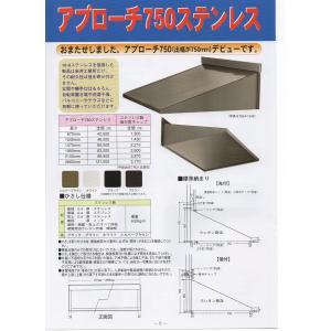 アプローチ750ステンレス 2860mm長さ 後付用キャップ入り|hisashino