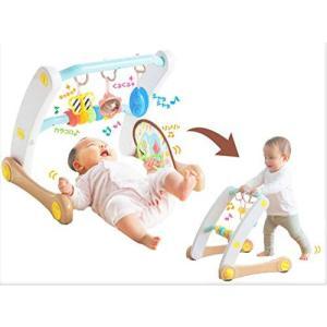 うちの赤ちゃん世界一 (R) スマート知育ジム&ウォーカー|hiseshop
