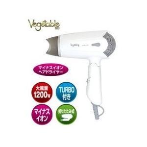 Vegetable・ベジタブル マイナスイオンヘアドライヤー GD-H600W|hit-market