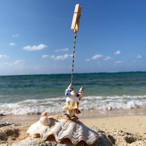 メニュー立て 貝がらシーサー、カエル|hit-okinawa