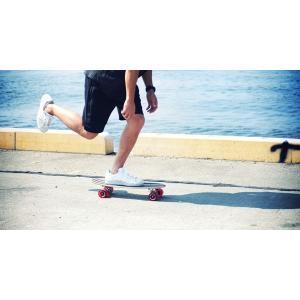 ミニクルージング スケートボード DSB-17|hitline|02
