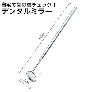 歯鏡 直径22cm×長さ約16cm デンタルミラー 歯垢チェック hito-mono