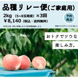 【予約商品-規格外】おトクでツウな桃の楽しみ方。3種の品種リレー|hitobito