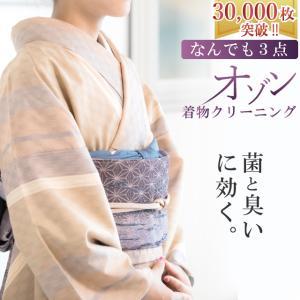 着物クリーニング オゾン京洗い なんでも3点 組み合わせ自由 臭いと菌に着目 sin8001-shi...
