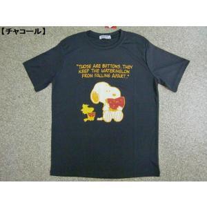 大きいサイズ スヌーピー Tシャツ SNOOPY 半袖Tシャツ メンズ レディース BIG アメカジ WOODSTOCK 吸汗速乾 DRY ロゴT すいか 清涼 夏|hitstyle