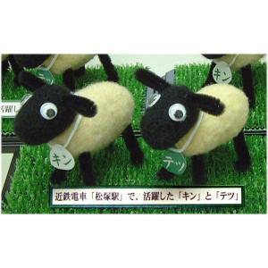 ◎近鉄電車の松塚駅で活躍した、めえめえ牧場の「キン」と「テツ」のフェルト人形キット。|hituji2gou