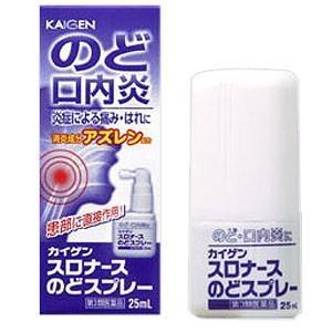 スロナースのどスプレー 25ml 2個 カイゲン 【第3類医...