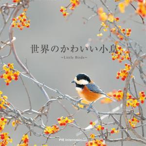 世界のかわいい小鳥|hkt-tsutayabooks