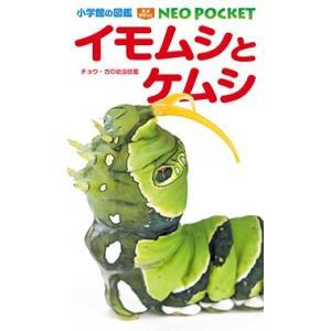 小学館の図鑑NEO POCKET イモムシとケムシ