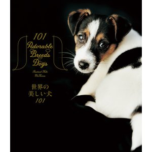 世界の美しい犬101 hkt-tsutayabooks
