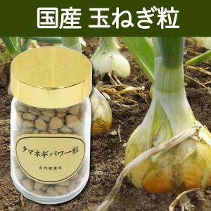 国産玉ねぎ粒95g(250mg×380粒) たまねぎ タマネギ 玉葱外皮使用 ケルセチン ポリフェノール含有 サプリメント タブレット|hl-labo