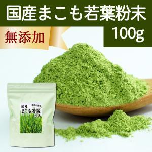 国産まこも若葉粉末100g マコモパウダー マコモ 青汁 マコモダケ|hl-labo