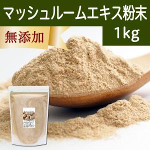 シャンピニオンエキス粉末1kg マッシュルームエキスパウダー 溶けやすく料理にも合う hl-labo