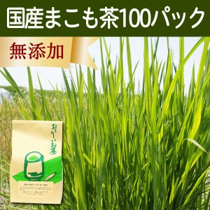 国産まこも茶4.5g×100パック 煮出し用ティーバッグ マコモ茶 真菰茶 マクロビオティック 徳用 マコモダケ ティーパック 無農薬|hl-labo