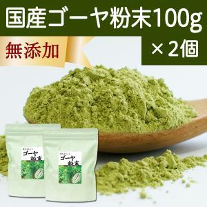 国産ゴーヤ粉末100g×2個 沖縄産 青汁 サプリメント 無添加 まるごと 丸ごと 100% ゴーヤー パウダー 苦瓜 にがうり ジュースに|hl-labo