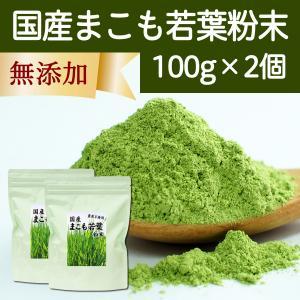 国産まこも若葉粉末100g×2個 真菰パウダー マクロビオティック 農薬不使用 マコモ 青汁 マコモダケ まこもたけ hl-labo