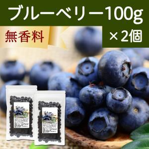 ブルーベリー100g×2個 ドライフルーツ hl-labo