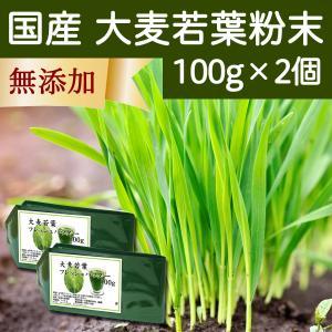 国産・大麦若葉粉末100g×2個 無添加 100% 青汁スムージーに 野菜不足の方に 無農薬|hl-labo