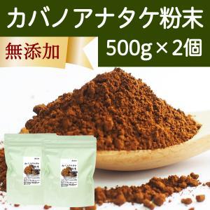 カバノアナタケ粉末500g×2個 ロシア産 パウダー チャーガ チャガ かばのあなたけ 樺のあな茸 無添加 きのこ|hl-labo