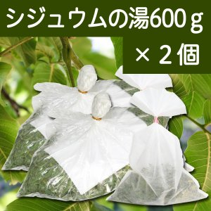 シジュウムの湯600g×2個 グアバ グァバ シジウム 乾燥 葉 入浴用 不織布付き hl-labo