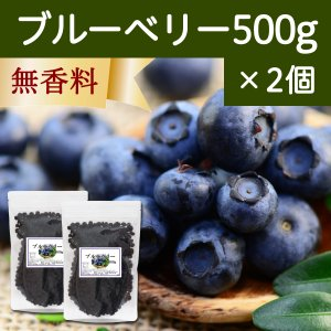 ブルーベリー500g×2個 ドライフルーツ チャック付き袋|hl-labo